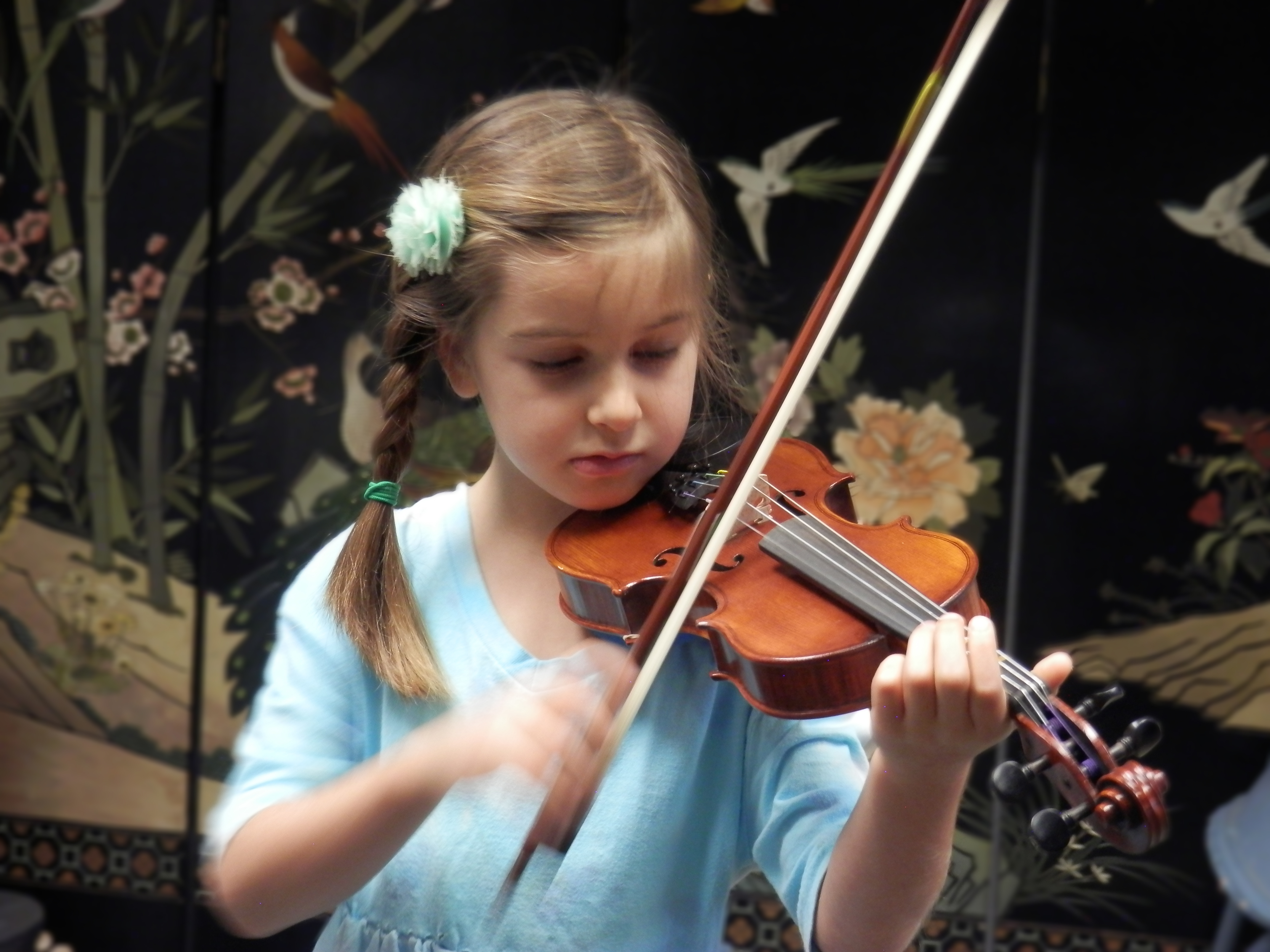Lucy Violin